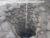 16 марта 2020 г. О том, как ведутся раскопки в Калининграде